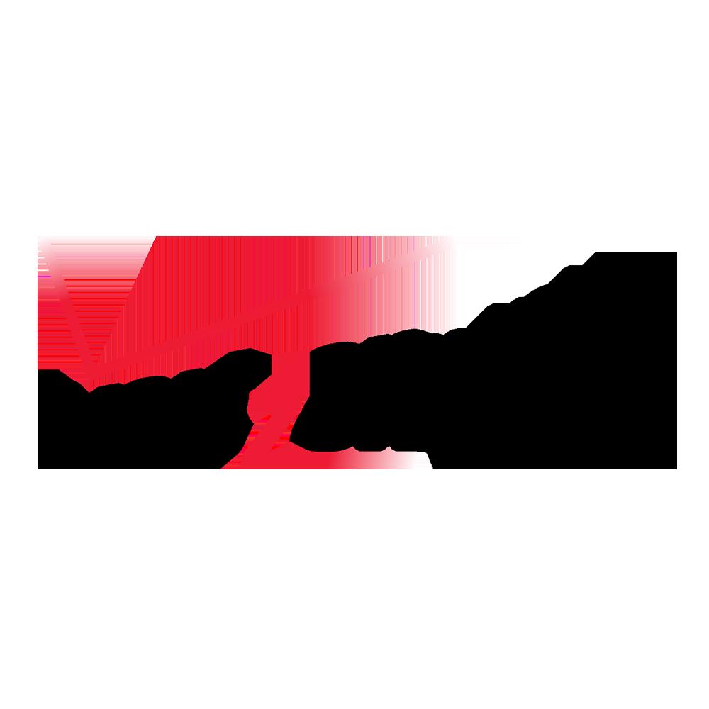 + VERIZON