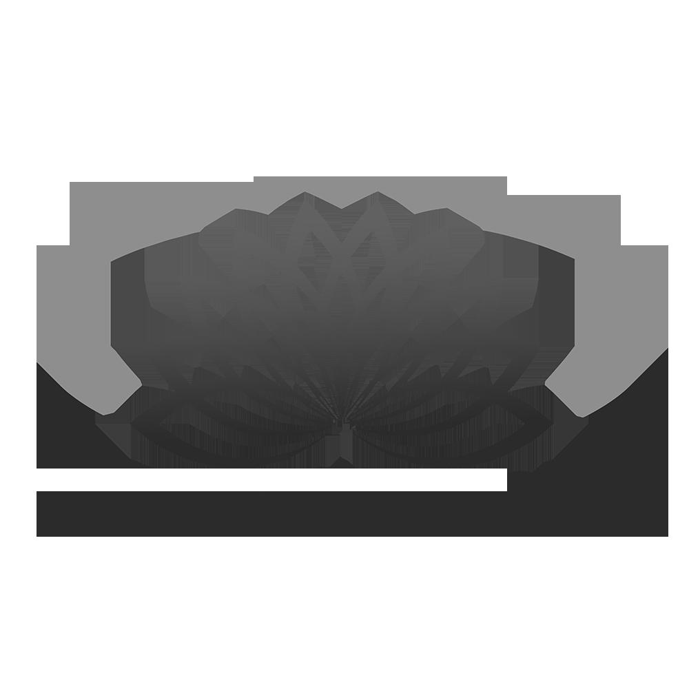 + LOTUS TRAUMA CARE GREY