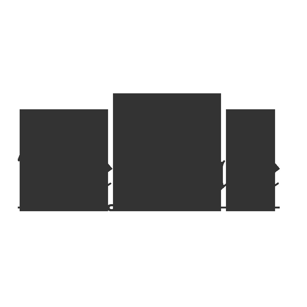 + THE DRAKE CHICAGO
